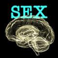 brain_sex.jpg