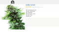 Buy Northern Lights Automatic seeds online copy.png