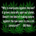 b3d1b4331ebad939729ec3ea10390564--funny-weed-pictures-funny-weed-quotes.jpg