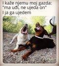 FB_IMG_1605105507760.jpg