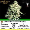 White Rhino.jpeg
