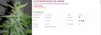 Auto Mazzar Kush XXL.png