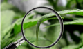 Screenshot_8.png