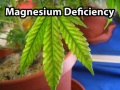Screenshot_10.png