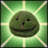 Happy Shrub