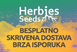Herbies Headshop